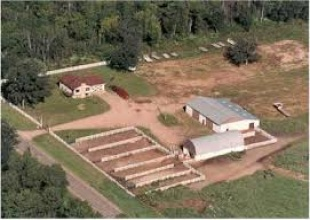 Stables, Stable - High Performance Quarter Horses , Peebles Farm, Listing ID 1095, Augusta, Arkansas, United States,