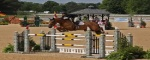 Professionals, Equestrian Professional  - High Performance Show Jumpers, Felchtair, Listing ID 1047, Muhlhausen, Germany,