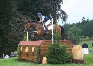 Professionals, Equestrian Professional - High Performance Eventing, Darnick, Listing ID 1048, Melrose, United Kingdom,